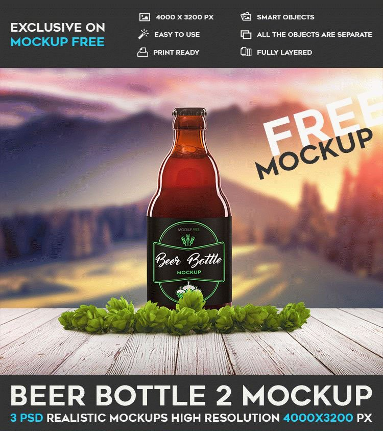 bigpreview_beer-bottle-2