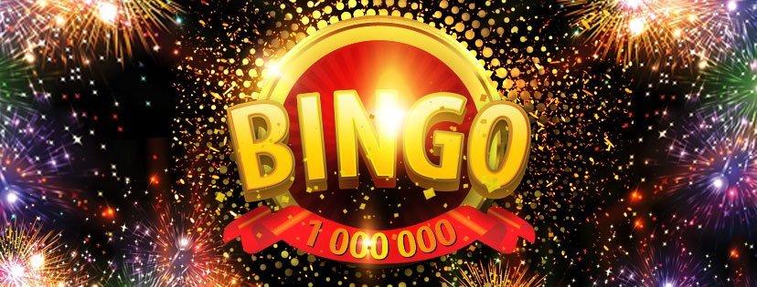 bingo-preview