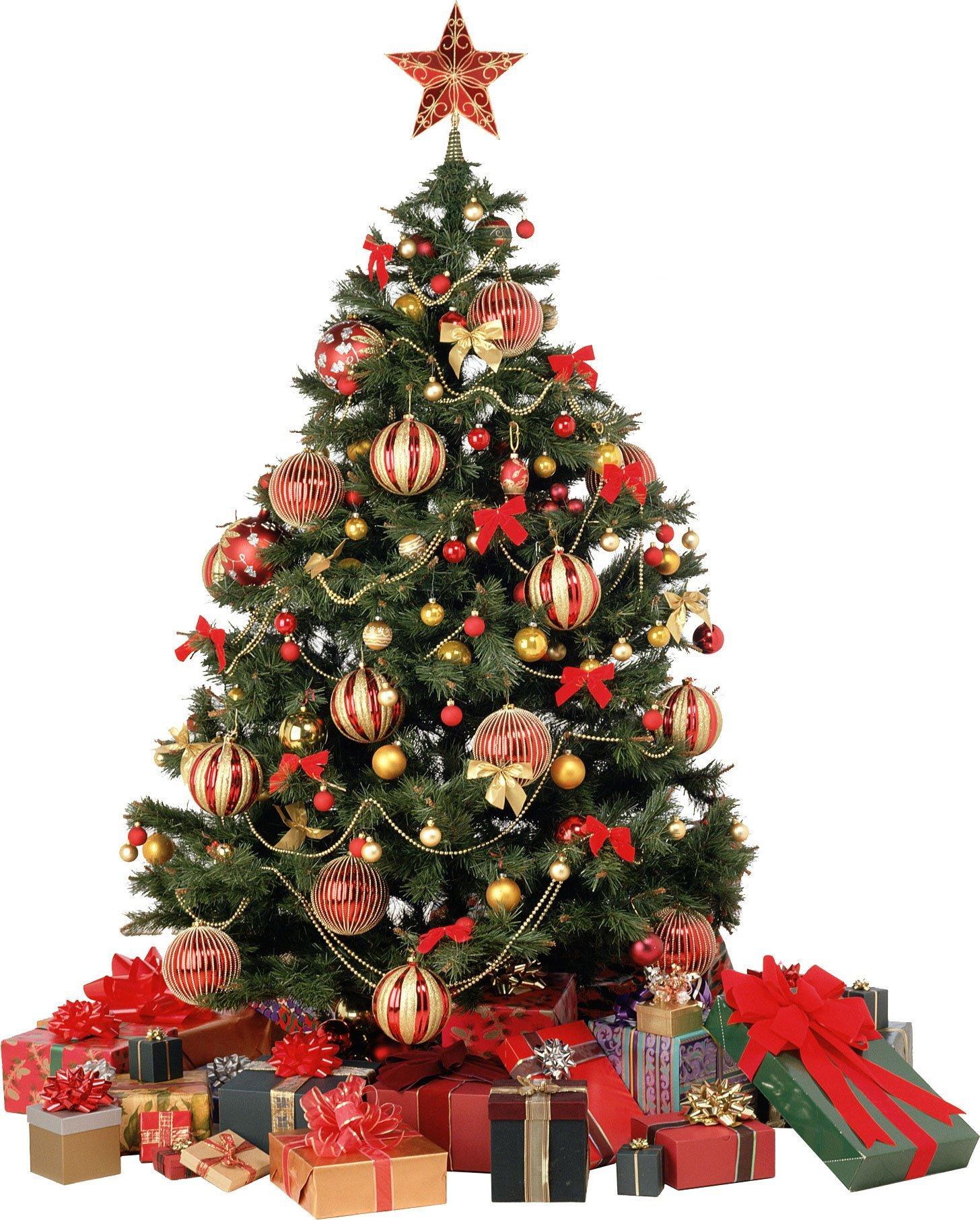xmas_tree_png_8