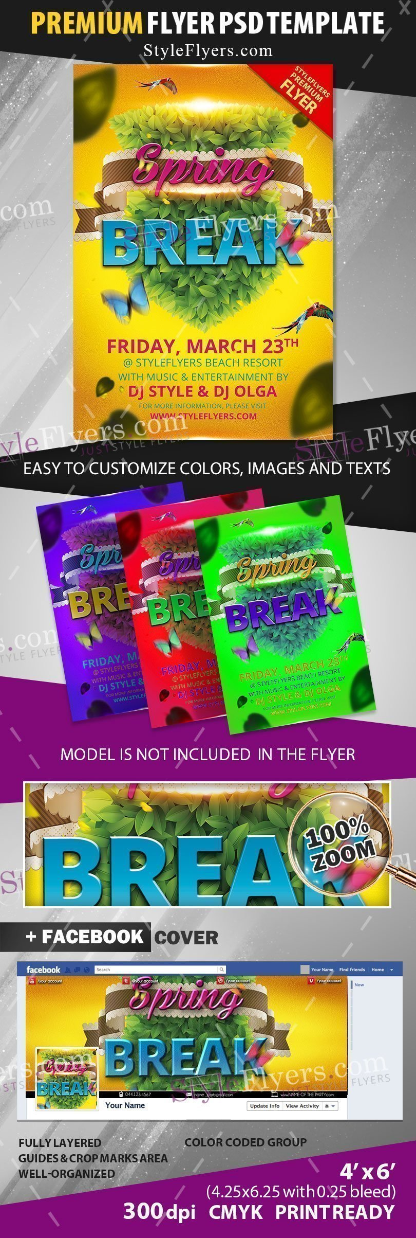 preview_Spring_breake_Flyer_premium_template