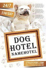 Dog-hotel